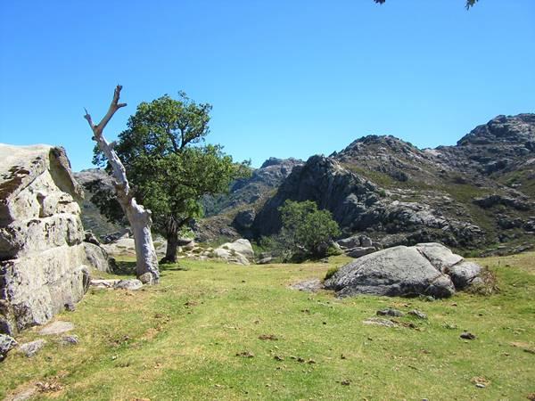 Parque Nacional Peneda Gerês prado do conho